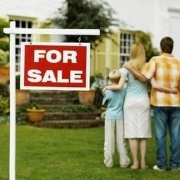 Welcome to The Moneybug | Moneybugbuys Houses | Scoop.it