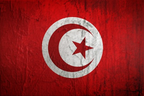 Des entreprises tunisiennes dans les TIC misent sur la Côte d'Ivoire | Actualités Afrique | Scoop.it