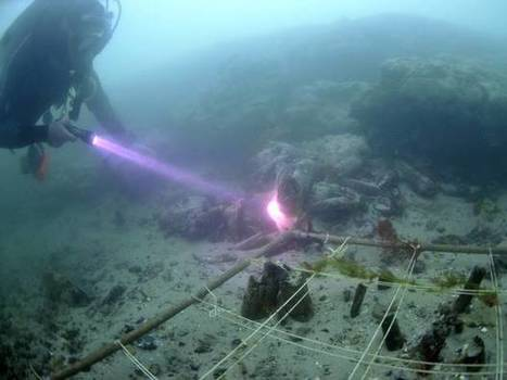 An underwater discovery may have just changed Britain's history forever | microburin mesolithic archaeology | Scoop.it