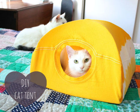 DIY cat tent | HANDMADE, DIY, REUSE, REDUCE, RECYCLE, UPCYCLE, RECREATE, RETHINK, etc | Scoop.it