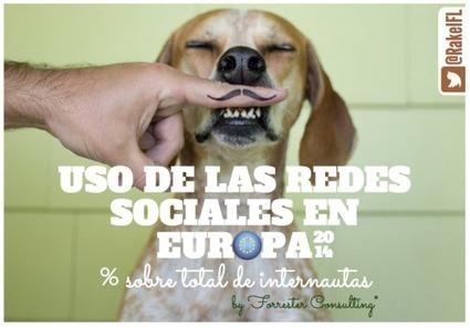 Uso de las Redes Sociales en Europa | Aprendizaje | Scoop.it