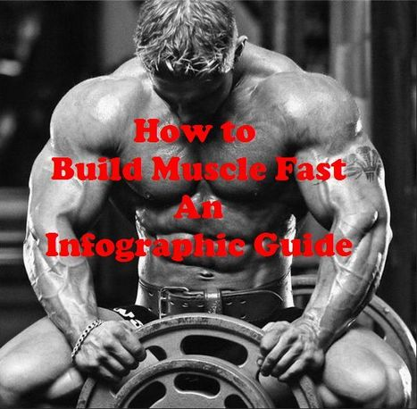 How to Build Muscles Fast ? A Simple Infographic Guide   Health & Digital Tech Magazine - 2016   Scoop.it