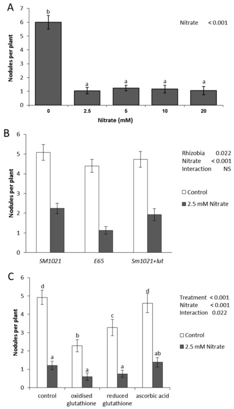 Molecular Signals Controlling the Inhibition of Nodulation by Nitrate in Medicago truncatula | Plant-Microbe Symbiosis | Scoop.it