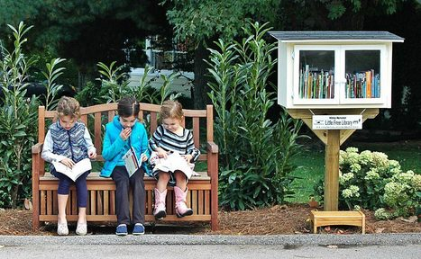 Little Free Library  | Library & Information Science | Scoop.it