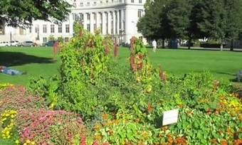 Edible Landscaping in Parks to Feed the Homeless -   what if parks produced food for the needy | Eco Reality | Scoop.it