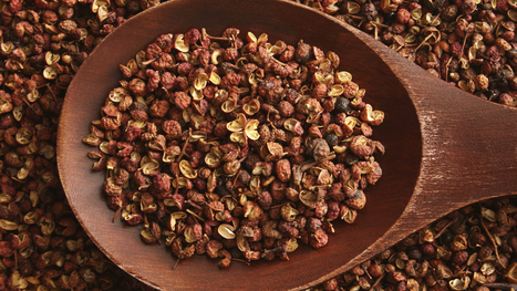 Sichuan Pepper's Buzz May Reveal Secrets Of The Nervous System | Erba Volant - Applied Plant Science | Scoop.it