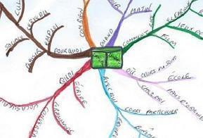 Mind map carte heuristique - Paperblog   Cartes mentales   Medic'All Maps   Scoop.it