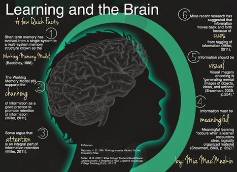 Union R-XI School District Professional Development Blog: What educators should know about the human brain... (91) | EDUcational Chatter | Scoop.it
