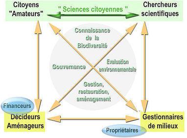 Sciences citoyennes - Wikipédia   Web 2.0 et société   Scoop.it