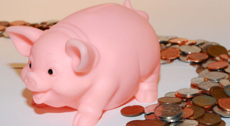 Franse varkenshouders krijgen 6 maanden vaste prijs | Production porcine | Scoop.it