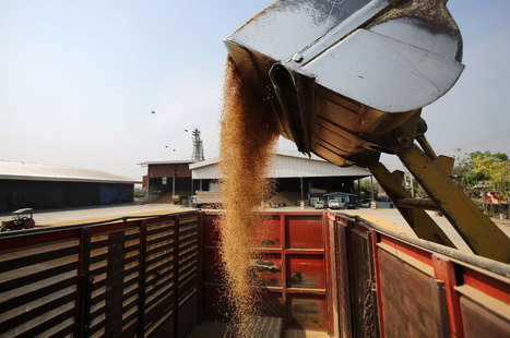 Thailand's Farmer-Friendly Rice Subsidy Backfires   IB Section 1 Micro   Scoop.it