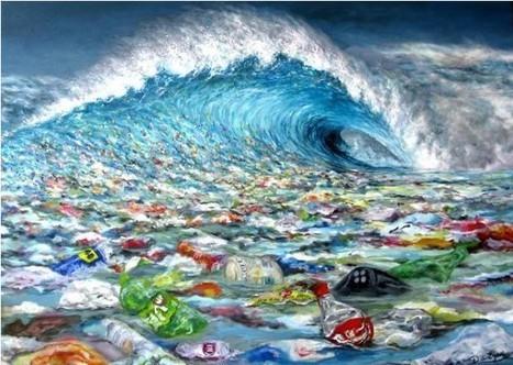 El inmenso vertedero oceánico que destapó el avión malasio | Contaminación en Oceanos | Scoop.it