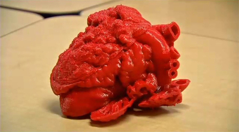 Illinois Doctor is Building a Library of 3D Printable Hearts | 3D printing | Scoop.it