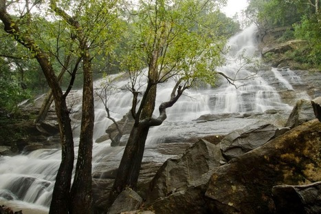 Places to See in Yercaud | Blog | Scoop.it