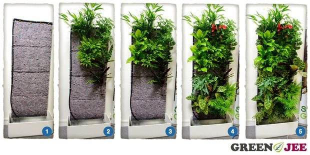 Greenjee le mur végétal intérieur en kit | La Revue de Technitoit | Scoop.it