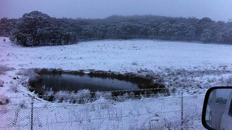 Weather set to turn wild in Sydney as snow falls across NSW | Leading for Nature | Scoop.it