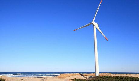 Les éoliennes japonaises résistent au tremblement de terre | Japan Tsunami | Scoop.it