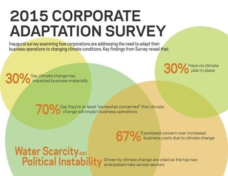 "Corporate Adaptation Survey | ""green business"" | Scoop.it"