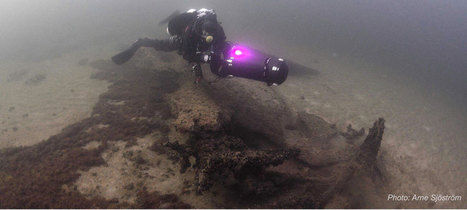 A drowned land - 11,000 year old settlement of Hanö Bay - : Archaeology News from Past Horizons   Aux origines   Scoop.it