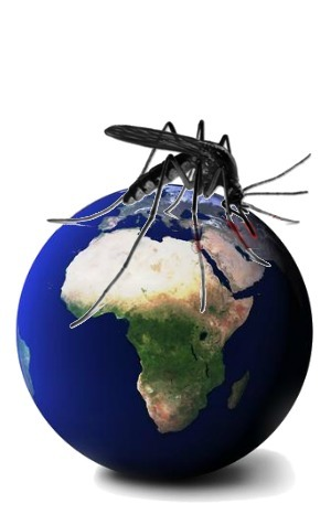 Measuring the Impact of Malaria | BaseCase | Digital Tools for Sales | Scoop.it