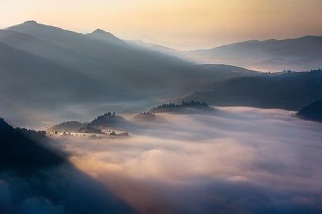 #Morning#Fog   Le It e Amo ✪   Scoop.it