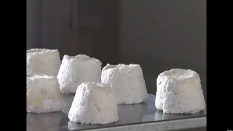 World's Most Expensive Cheese Costs $1,000 a Pound, Is Made from Donkey Milk | Strange days indeed... | Scoop.it
