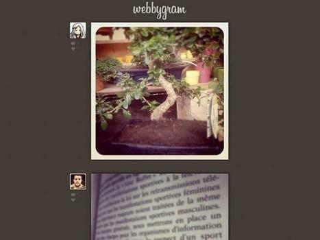 Instagram dans le navigateur avec Webbygram | #VeilleDuJour | Scoop.it