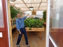 How to Grow Year Round in Aquaponics Using Grow Lights | Aquaponics World View | Scoop.it