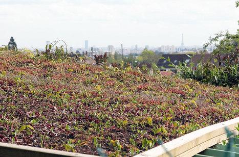 Syndicalisme : FNPHP, l'horticulture sur le devant de la Seine | Production végétale | Scoop.it