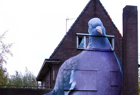 A Towering Pigeon on an Abandoned Home by 'Super A' #art #streetart #publicart #pigeon #bird | Luby Art | Scoop.it