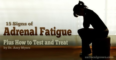 Everything You Need to Know About Adrenal Fatigue | Healthy Recipes and Tips for Healthy Living | Scoop.it