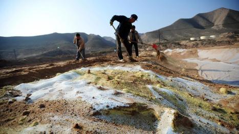 Un cinquième des sols chinois sont pollués | Chine Actu | Scoop.it