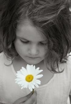 Un lugar ecológico: Las flores de Bach que ayudan a los niños a concentrarse y a incentivar su desarrollo | Apasionadas por la salud y lo natural | Scoop.it