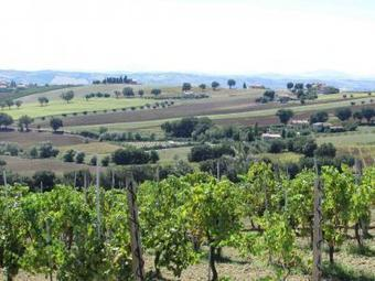 University of Oregon organizes Study Abroad Programs in Macerata | Food and Culture in Italy | Le Marche another Italy | Scoop.it