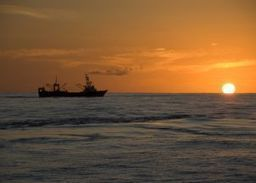 WORLDWIDE: World Fisheries, are we managing an effective decline? | Content | Scoop.it