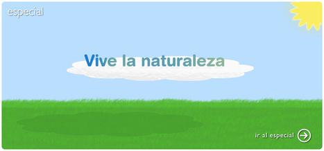 wikisaber.es | Recursos TIC - Educación Básica | Scoop.it