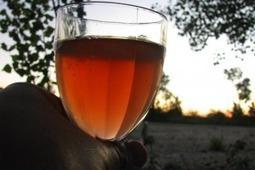 Weinrallye #50: Zwei von drei Naturweinen schmeckengut | Weinrallye | Scoop.it