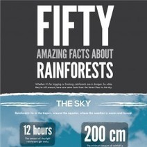 50 Amazing Facts About Rainforests | Visual.ly | Rainforests: Year 6 | Scoop.it