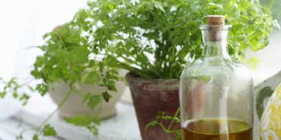 Anyone Can Grow Herbs With This Super-Helpful Chart | Gardening | Scoop.it
