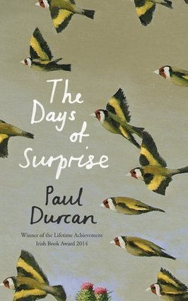 The Days of Surprise by Paul Durcan - RTE.ie | The Irish Literary Times | Scoop.it