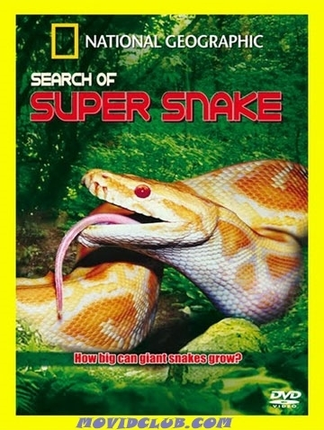MOVID CLUB: SEARCH OF SUPER SNAKE - DOCUMENTARY   FUN 4 FREE   Scoop.it