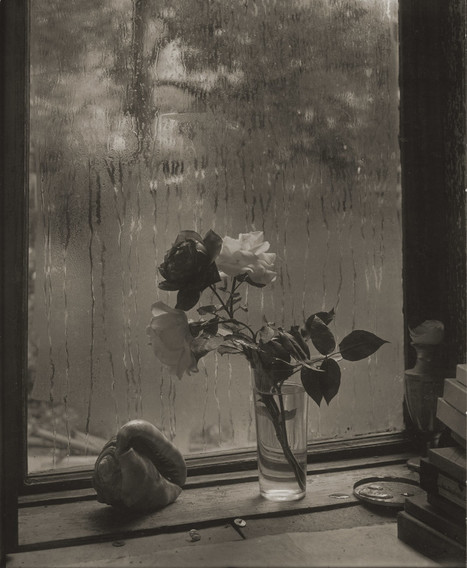 Josef Sudek, photographe vagabond devenu grand maître de la nature morte | L'actualité de l'argentique | Scoop.it