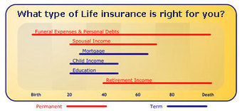 Life Insurance | Term Life Insurance Quotes | Farmers Insurance | Life Insurance New York | Scoop.it