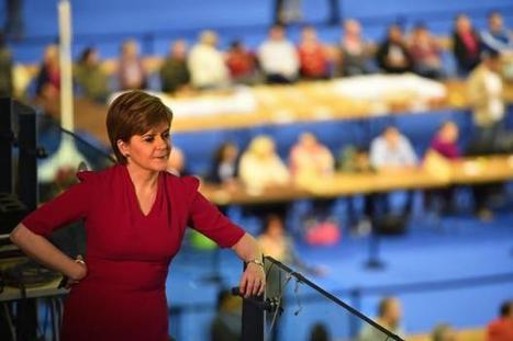 Only a tea party with Donald Trump could stop the SNP triumphing in May | My Scotland | Scoop.it