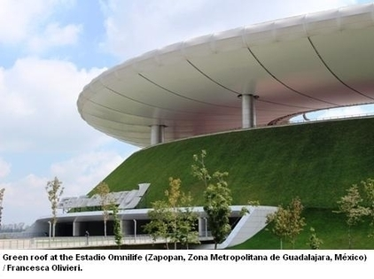 Passive cooling for buildings with green roofs | Better Mobility, Living, Logistics, Infrastructure | Scoop.it