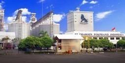 CPIN, Emiten Yang Terpengaruh Saat Rupiah Anjlok | Pemegang Saham | Scoop.it