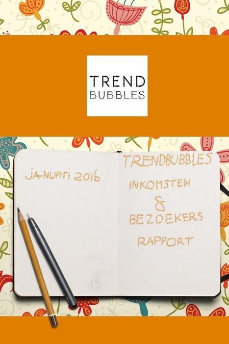 Inkomsten en Bezoekers rapport januari 2016 • Trendbubbles | TRENDBUBBLES | Scoop.it