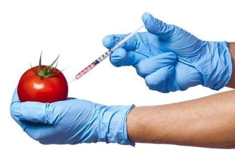 10 scientific studies that prove GMOs are toxic | Research Capacity-Building in Africa | Scoop.it