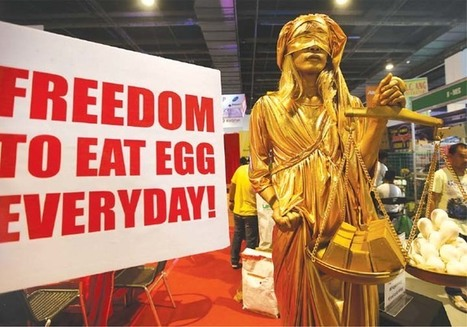 """Freedom to eat eggs 