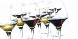 Verres à dégustation : Comment s'y retrouver ? | Articles Vins | Scoop.it